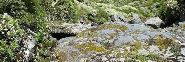 Vetta del monte Taranaki, Nuova Zelanda
