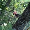 Arboricoltore Ecoetico